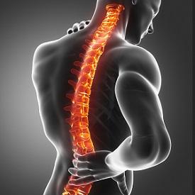 Spinal Injury Claim
